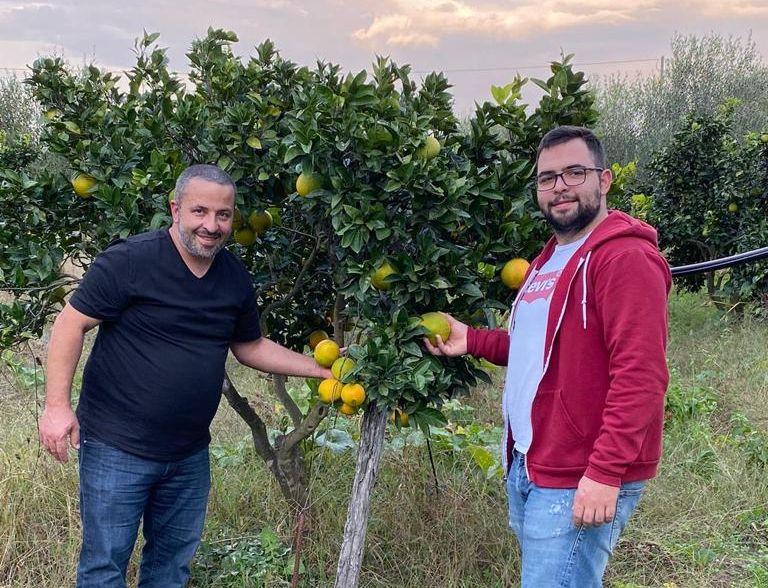 Cuore del Sud - Ernte der eigenen Orangen in Calabrien